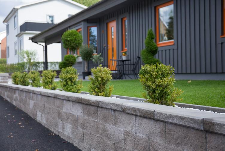En mur med några små buskar ovanpå